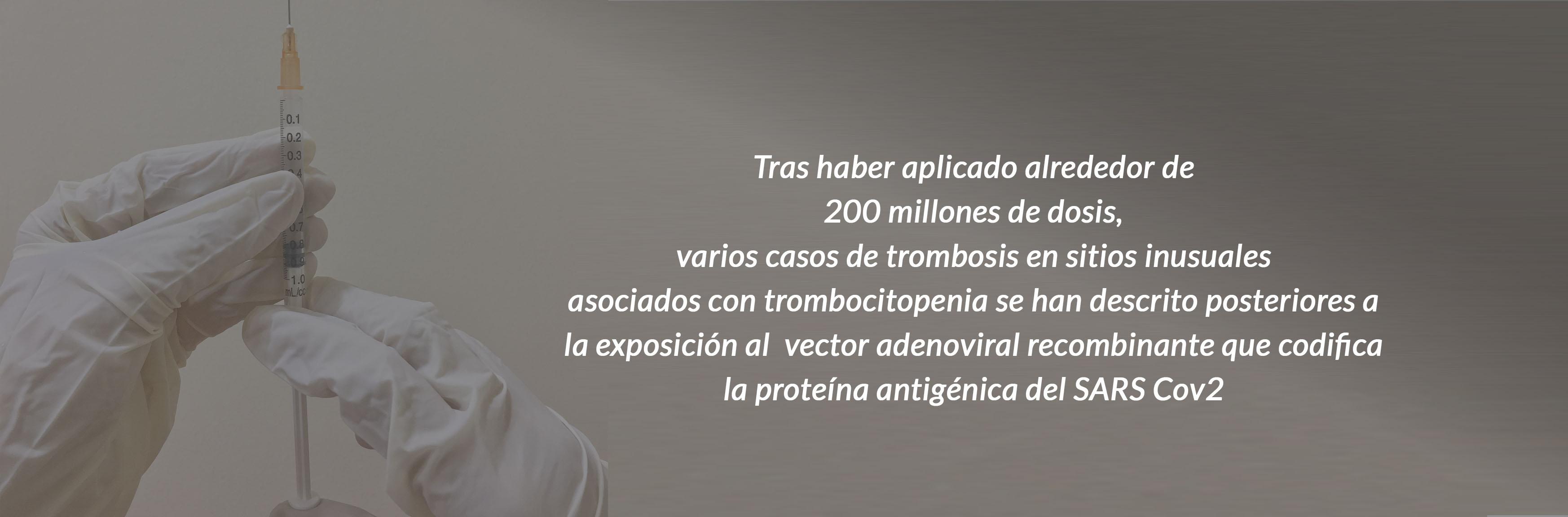 asovascular-vacuna-1